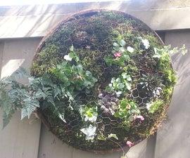Hanging Moss Garden
