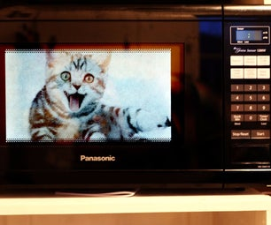 Microwave a Cat