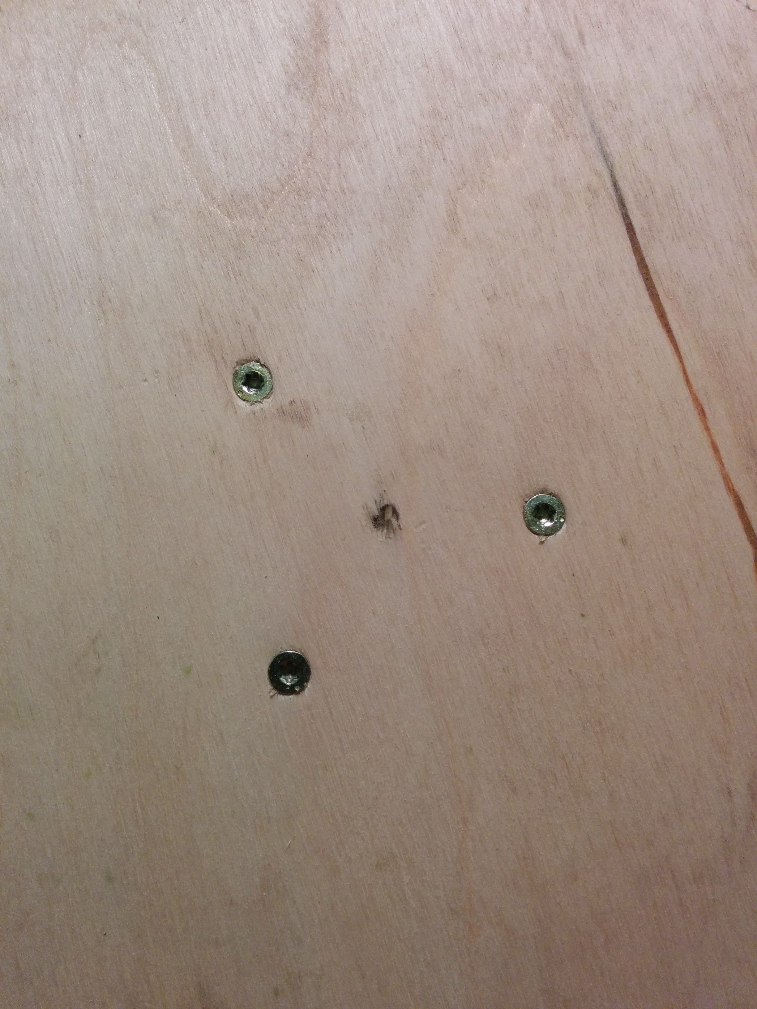 Picture of Screw in the Screws