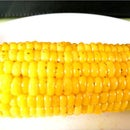 Juicy BBQ Corn on the Cob