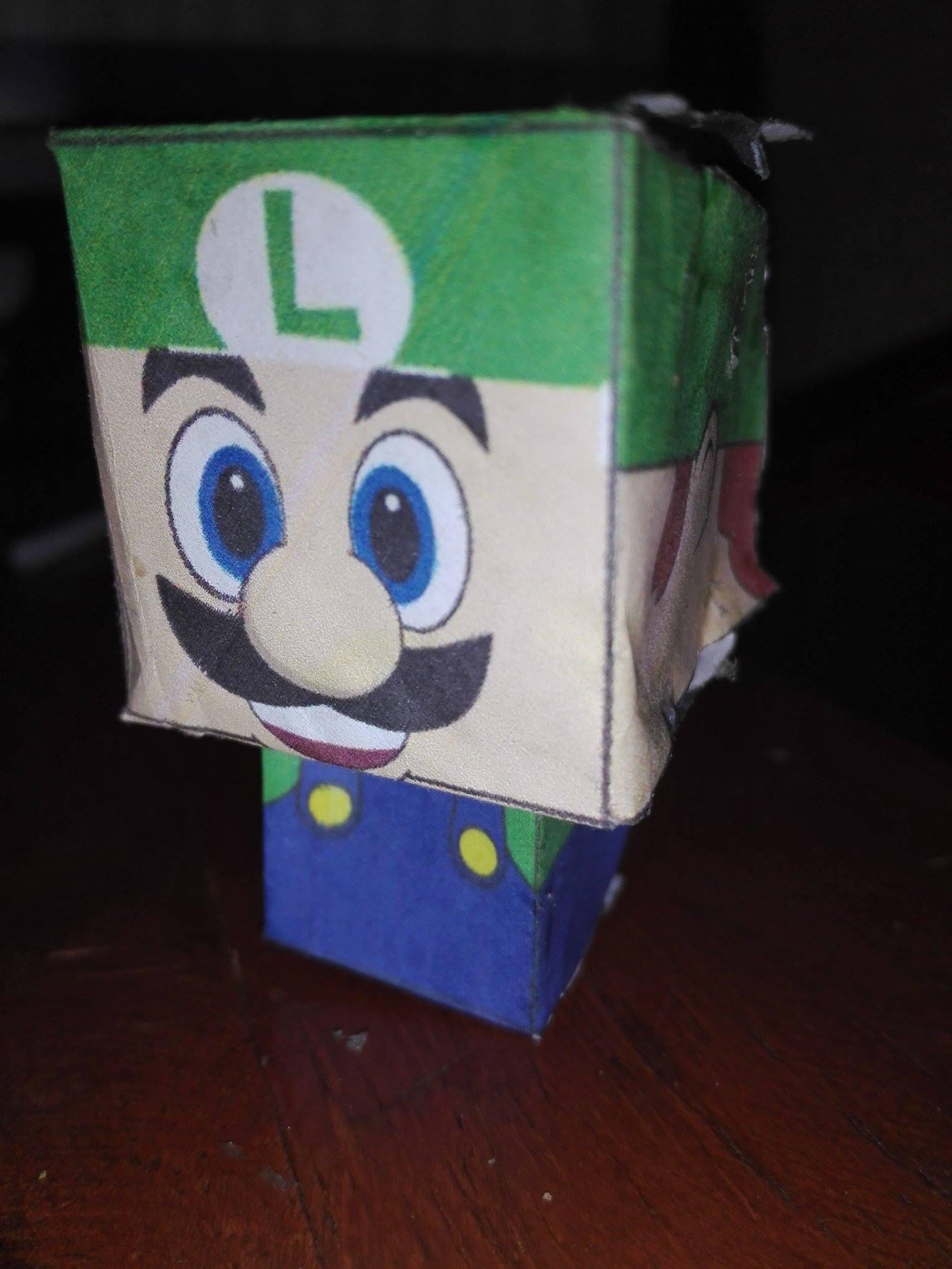 Picture of Luigi Craft 1 Metro