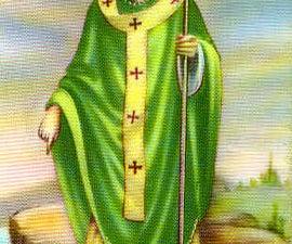 St Patricks Shamrock Aint a Clover