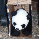 How to Catch a Panda