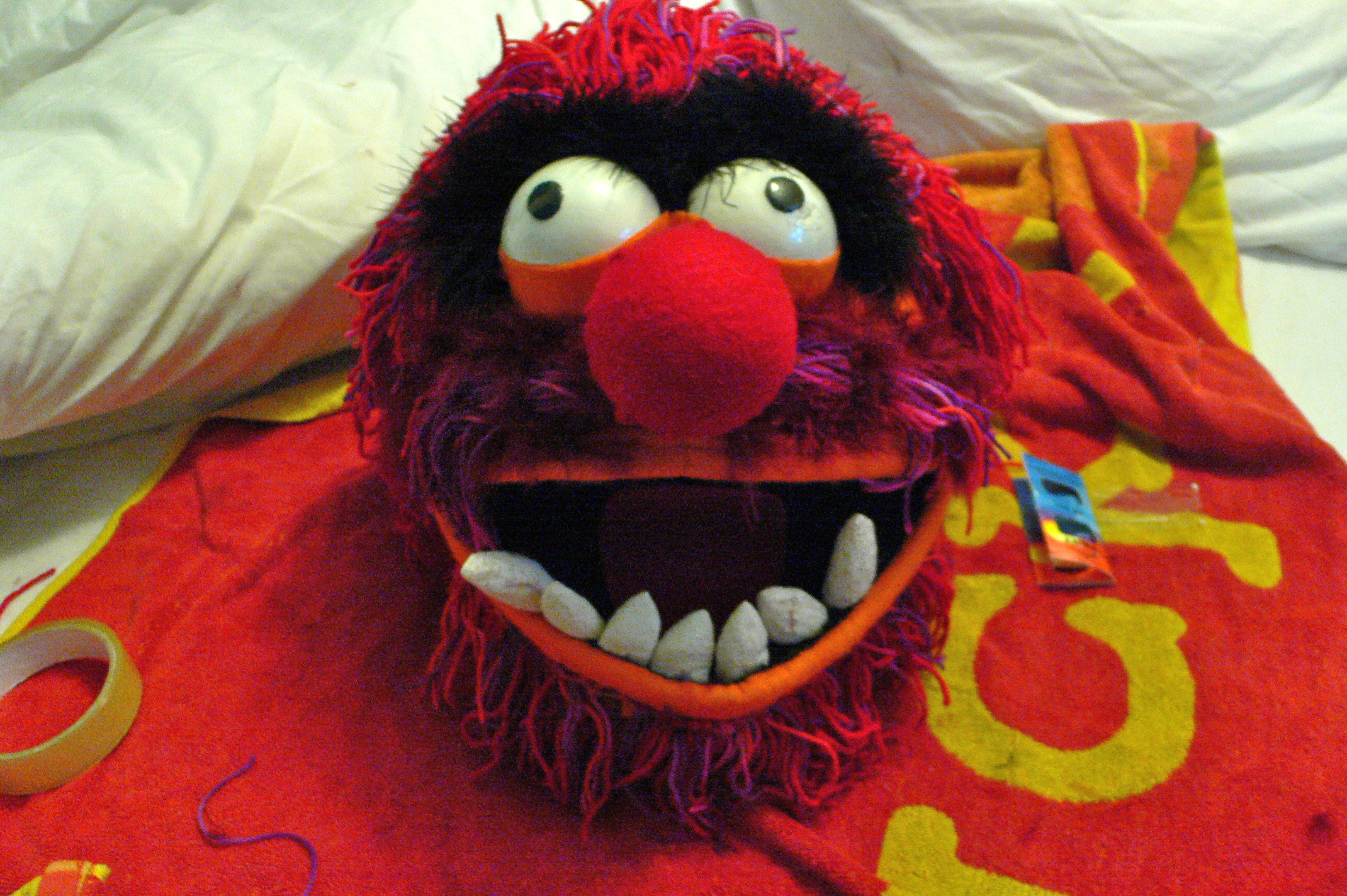 Picture of The Muppet Man Project