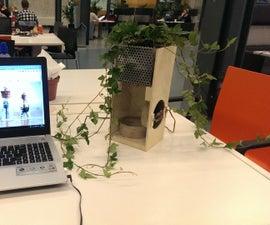Air Purifier using a Plant (TfCD)