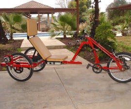 Custom Electric Trike - It's for the Dogs.