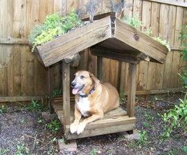 Green Roofed Dog Veranda