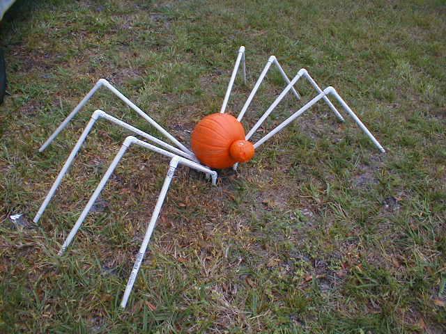 Picture of Pumpkin Spider