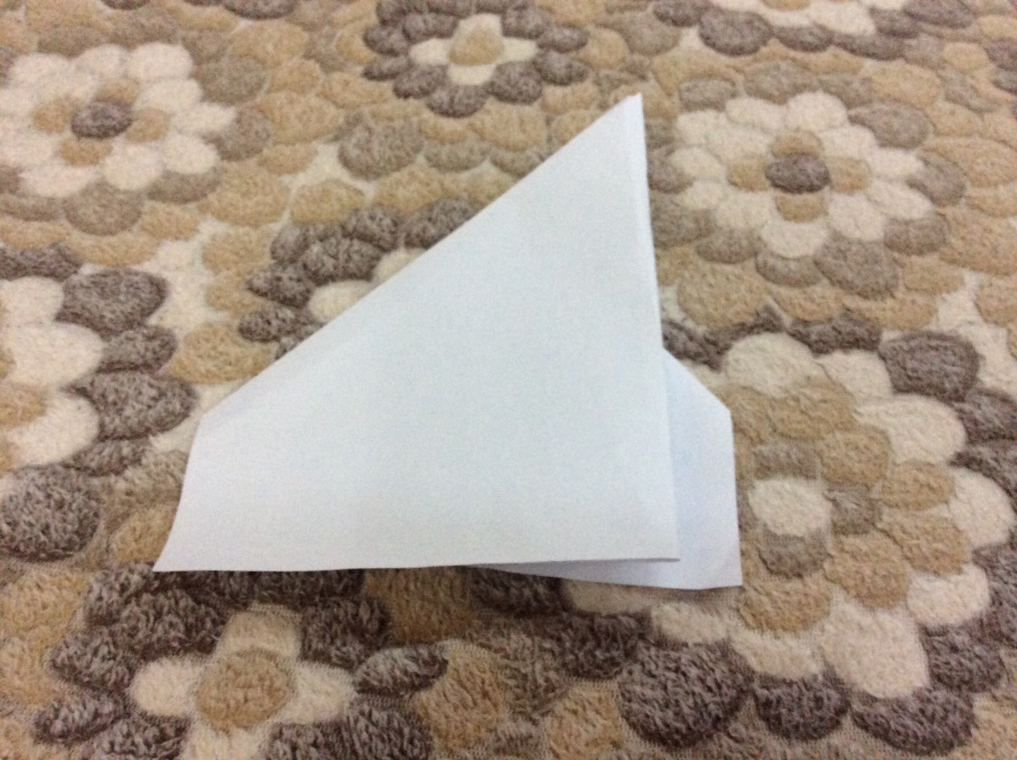 Picture of Second Flapping Wing