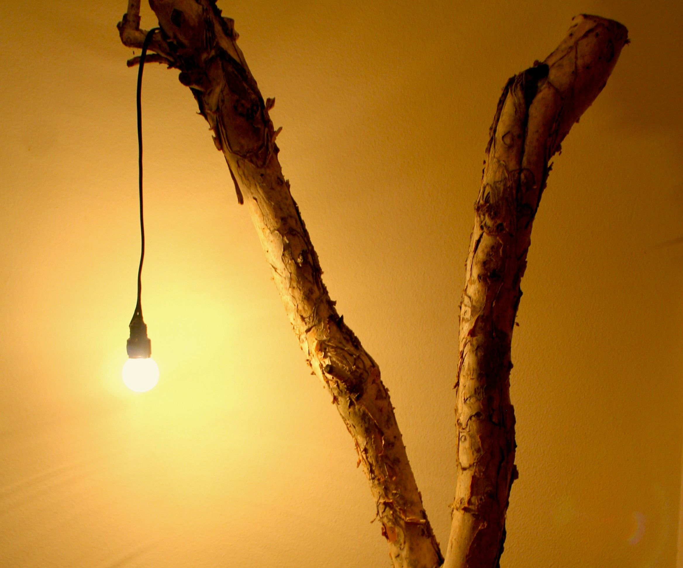 Tree Branch Lamp 15 Steps With Pictures Instructables