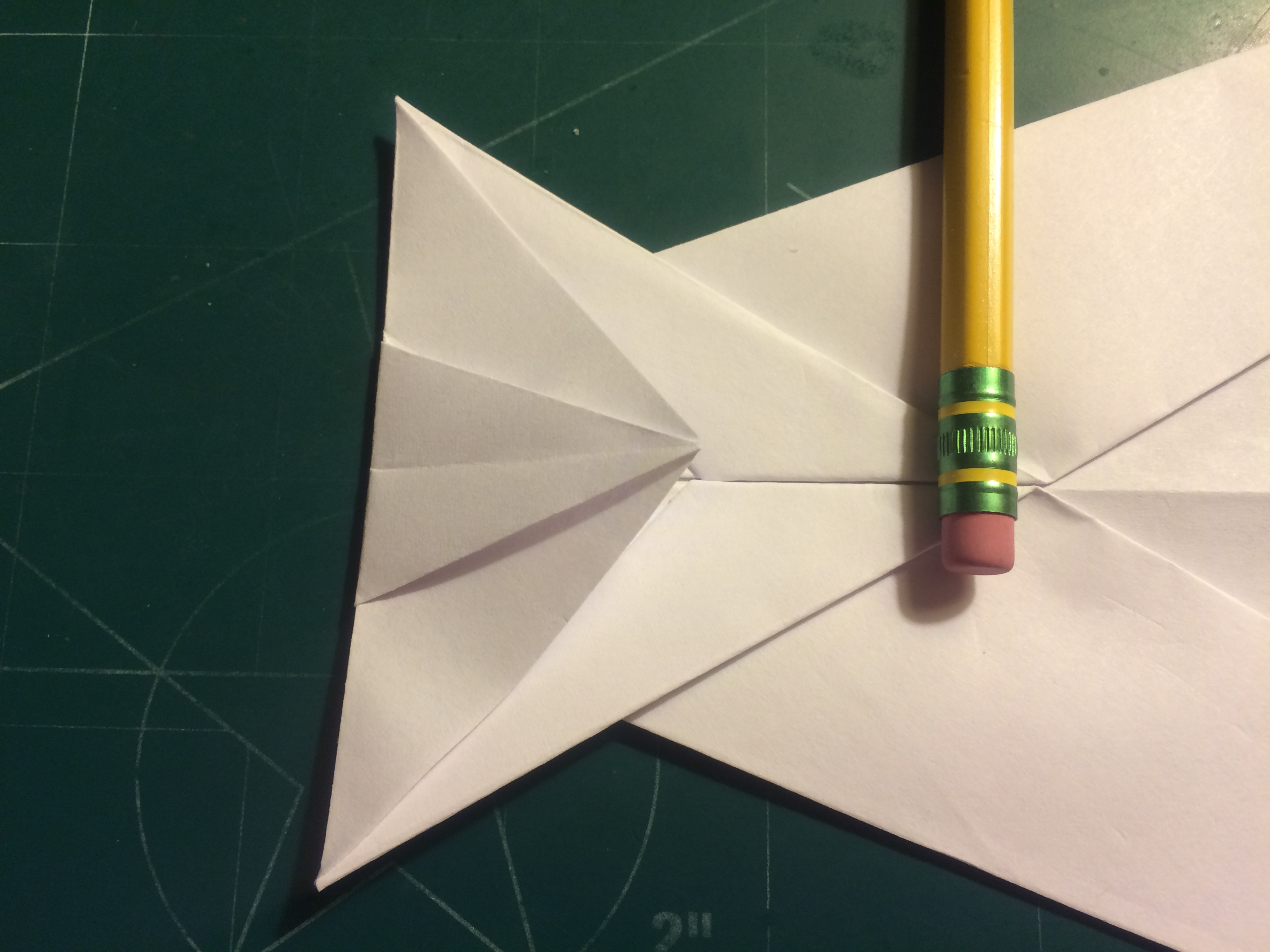 Picture of Canard Folding