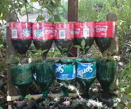 Bottle herb garden – a recycling project.