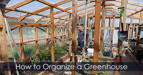Picture of Step 9: How to Organize a Greenhouse