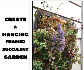 Create a Hanging Succulent Garden