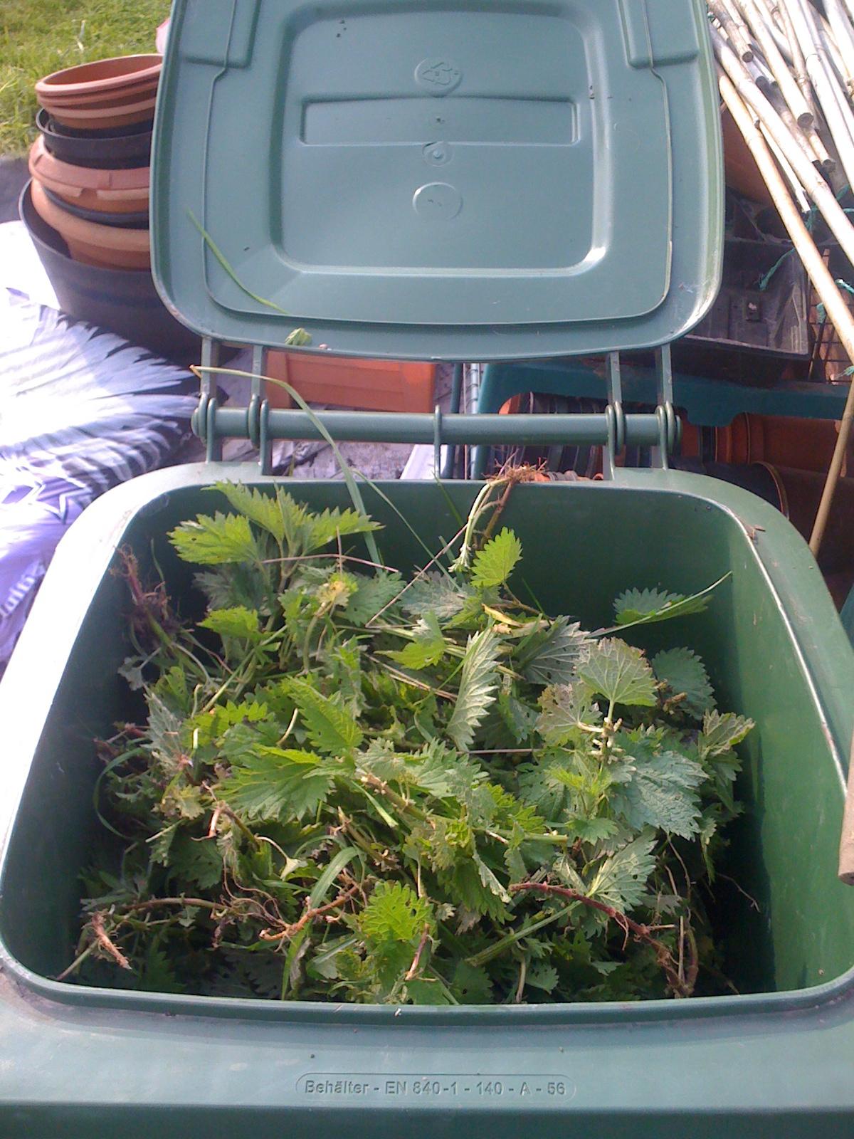 Picture of Nettle Fertiliser