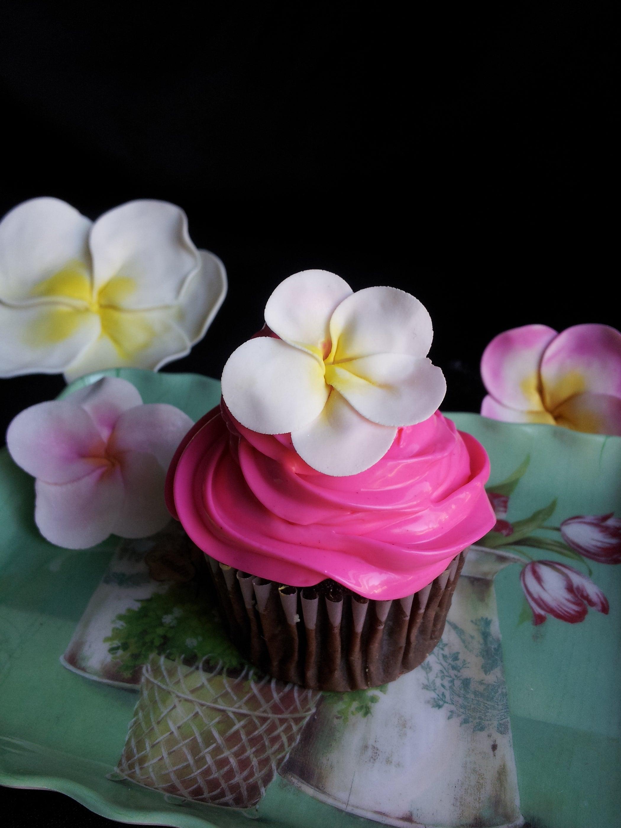 Plumeria cupcakes gumpaste 4 steps with pictures izmirmasajfo