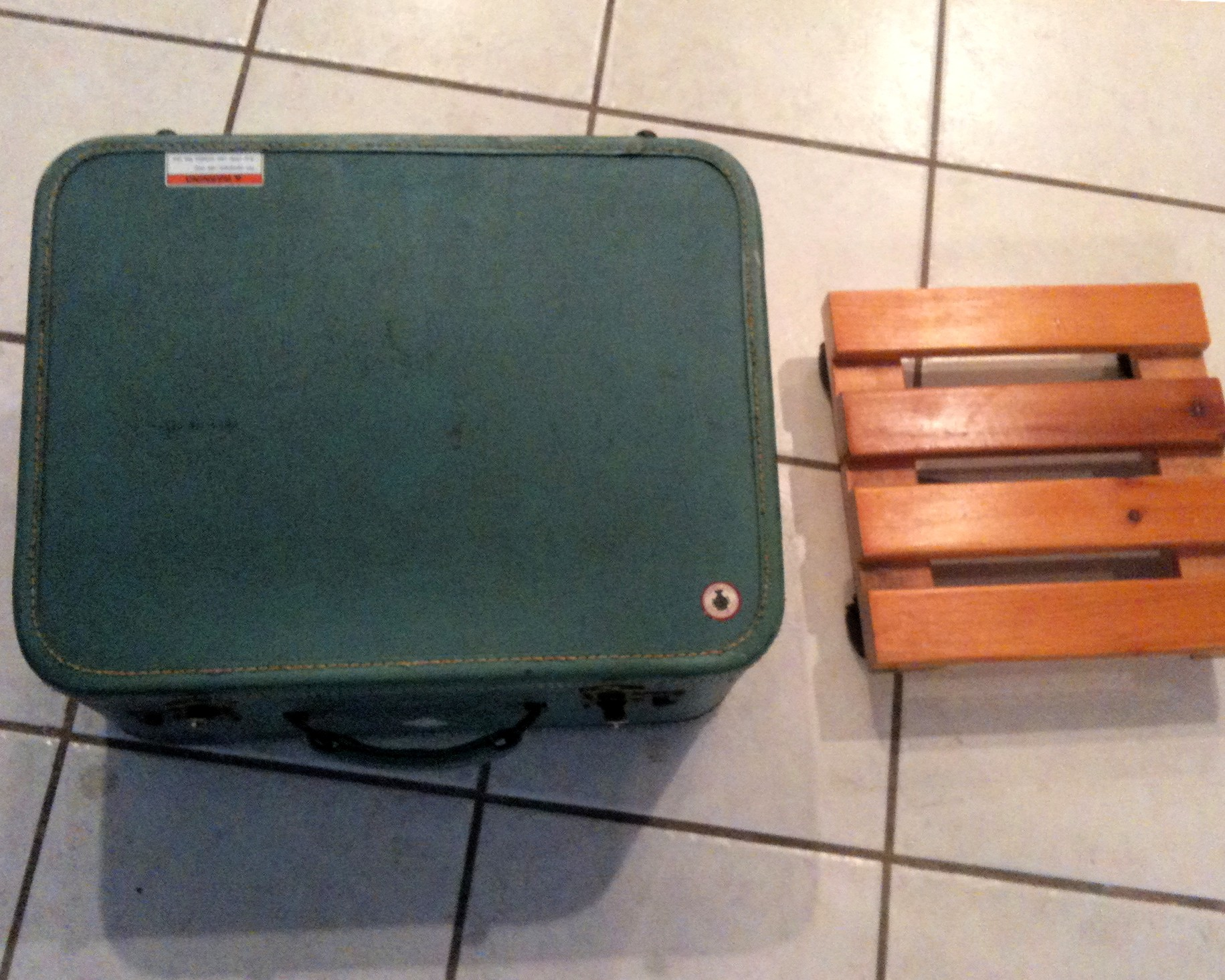 Picture of Pet Bed From a Vintage Suitcase in 5 Minutes!