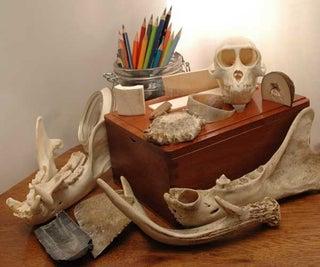 Bone Carving Materials