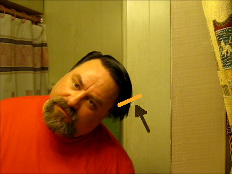 Picture of Cut the Hair on One Side of Your Head.