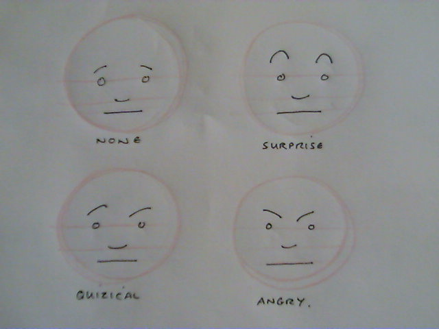 Picture of Expressions and Humour