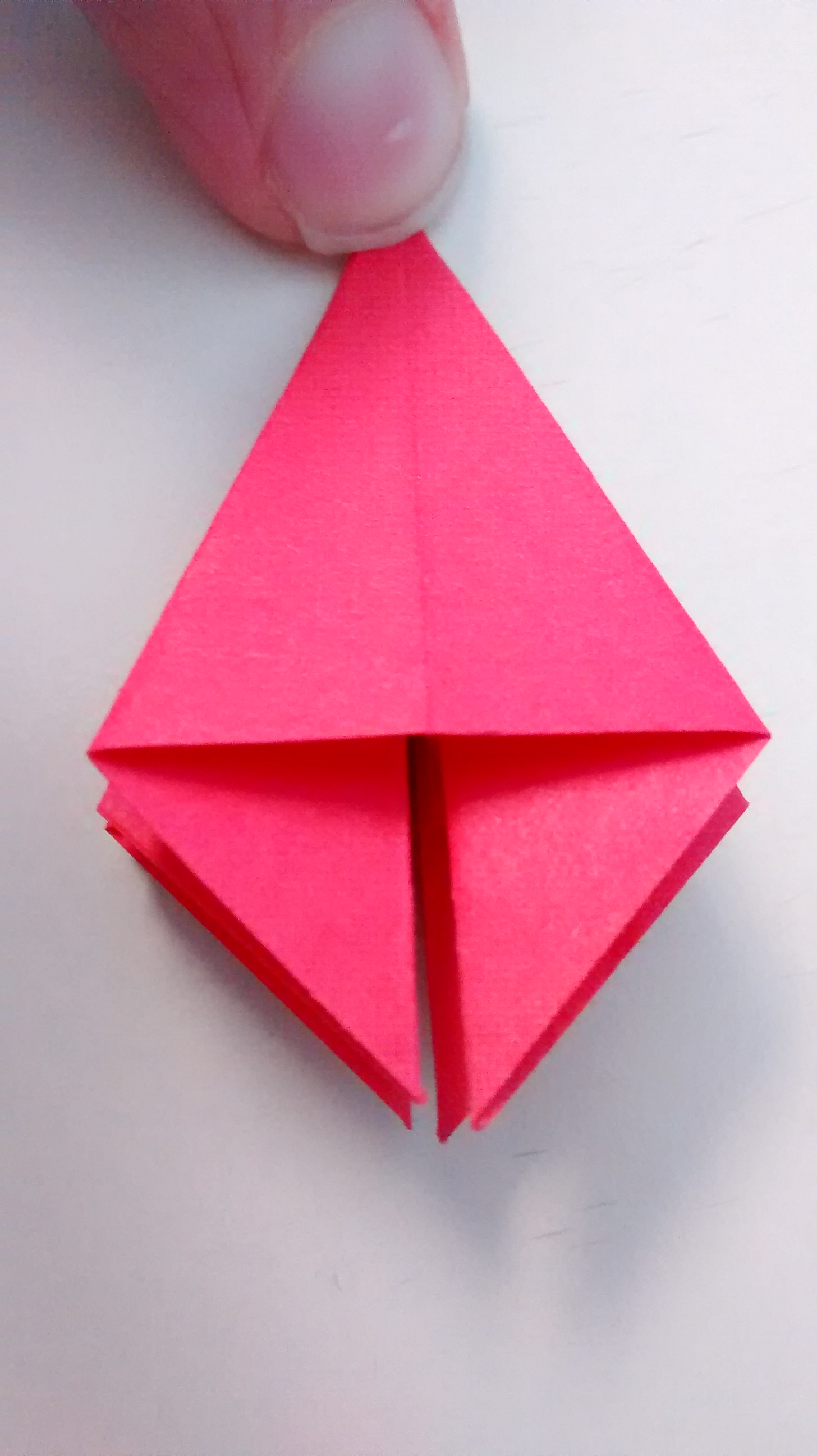 Picture of Folding Step 2
