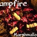 Roasty Toasty Marshmallows
