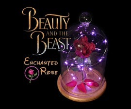 Enchanted Rose - Beauty and the Beast