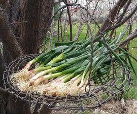 Wire Harvesting Basket