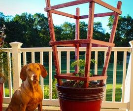 Obelisk Trellis for Garden