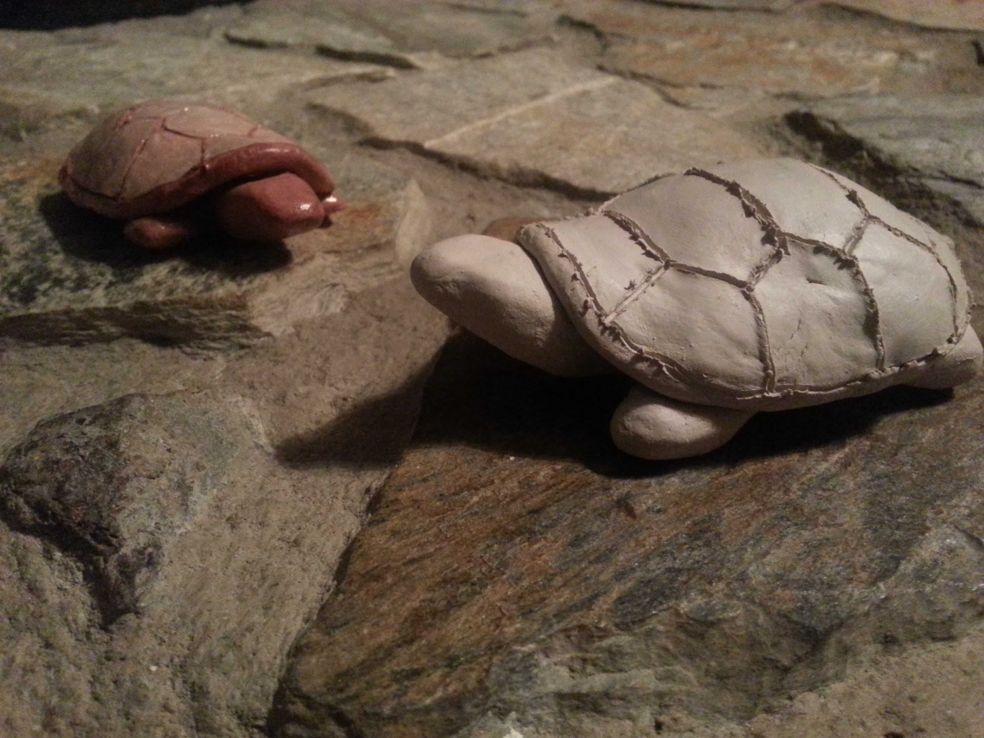 Picture of Clay Turtle Tutorial