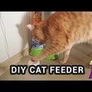 Arduino Cat Feeder