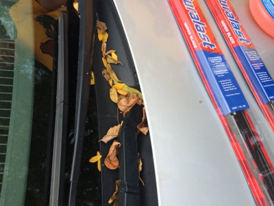 Cleaning Wiper Storage Area