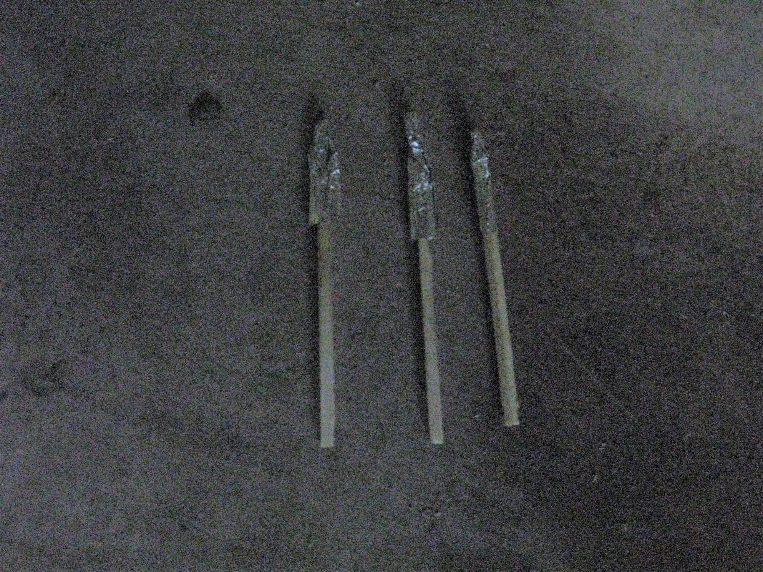 Picture of Build the Rockets