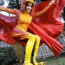 The Phoenix Costume Process