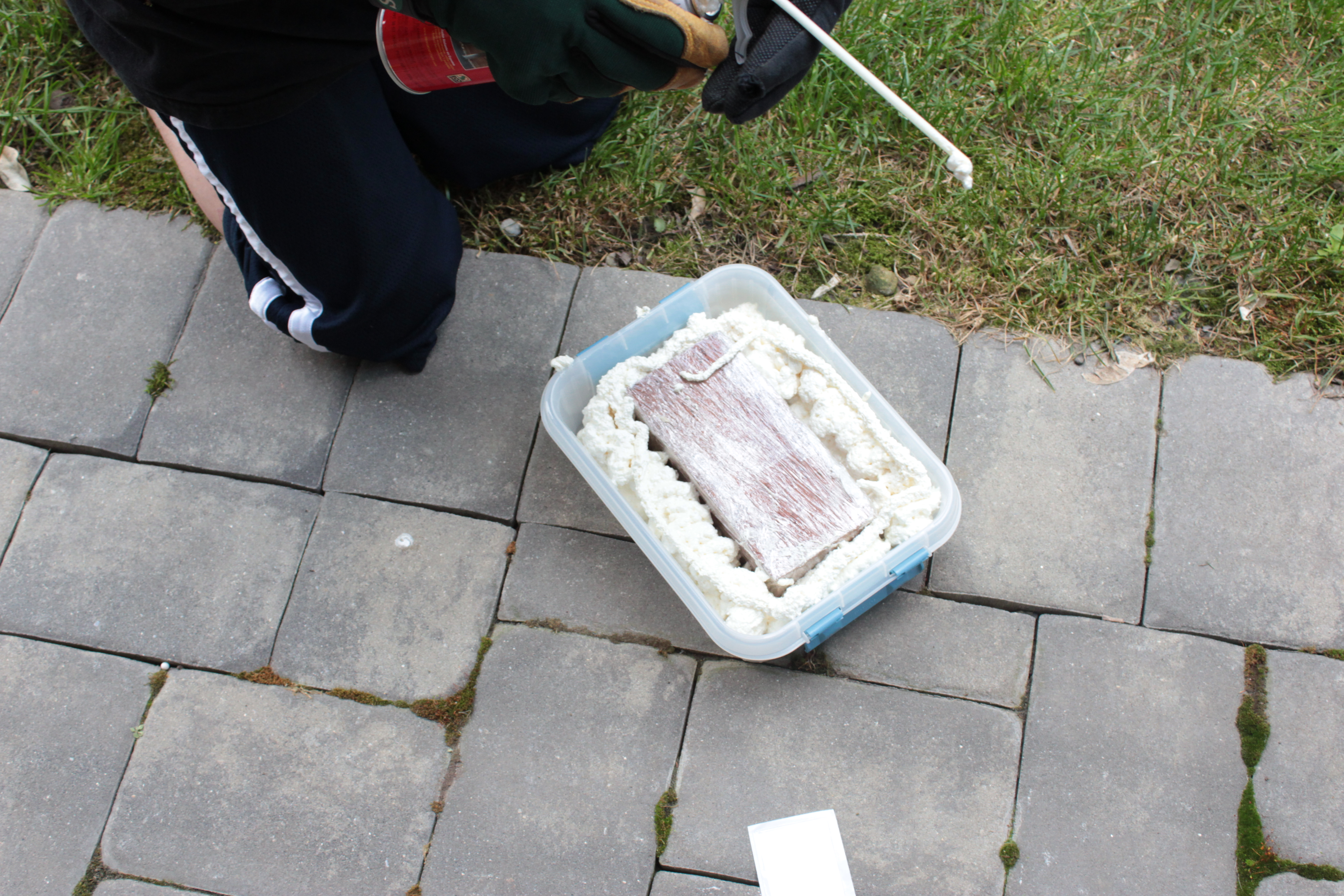 Picture of Casting the Mold