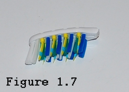 Picture of The Toothbrush