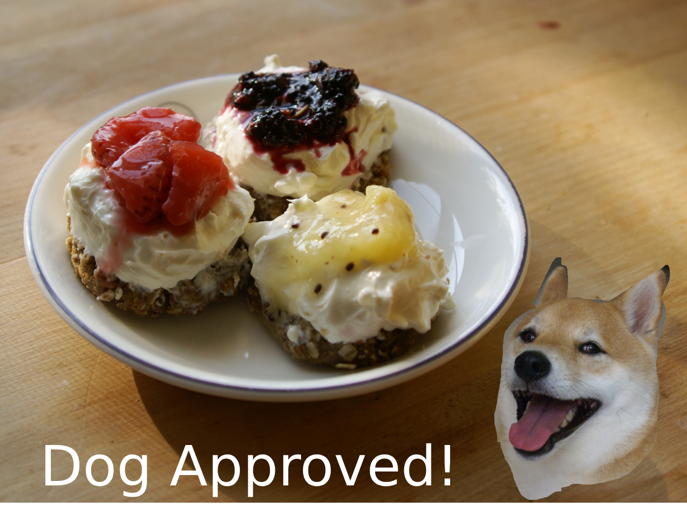 Picture of Dog Cheesecake Recipe