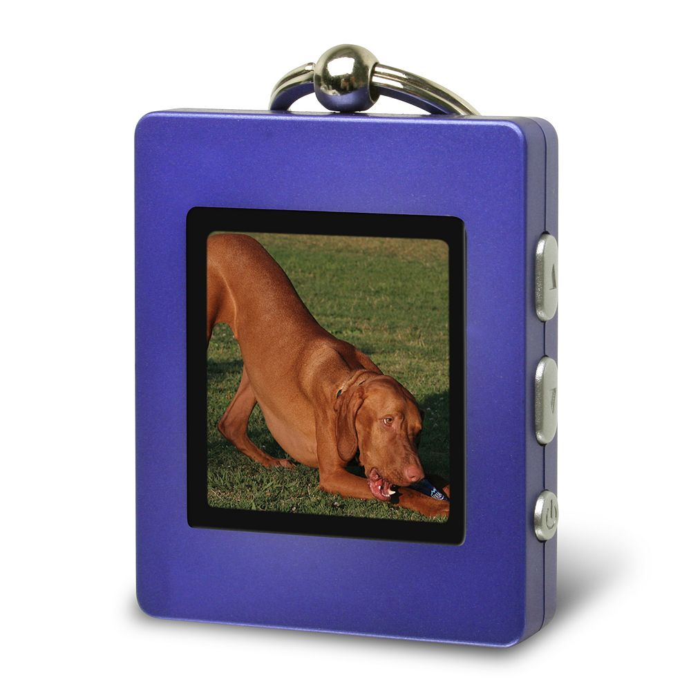 Picture of Find and Paint a Photo Keychain