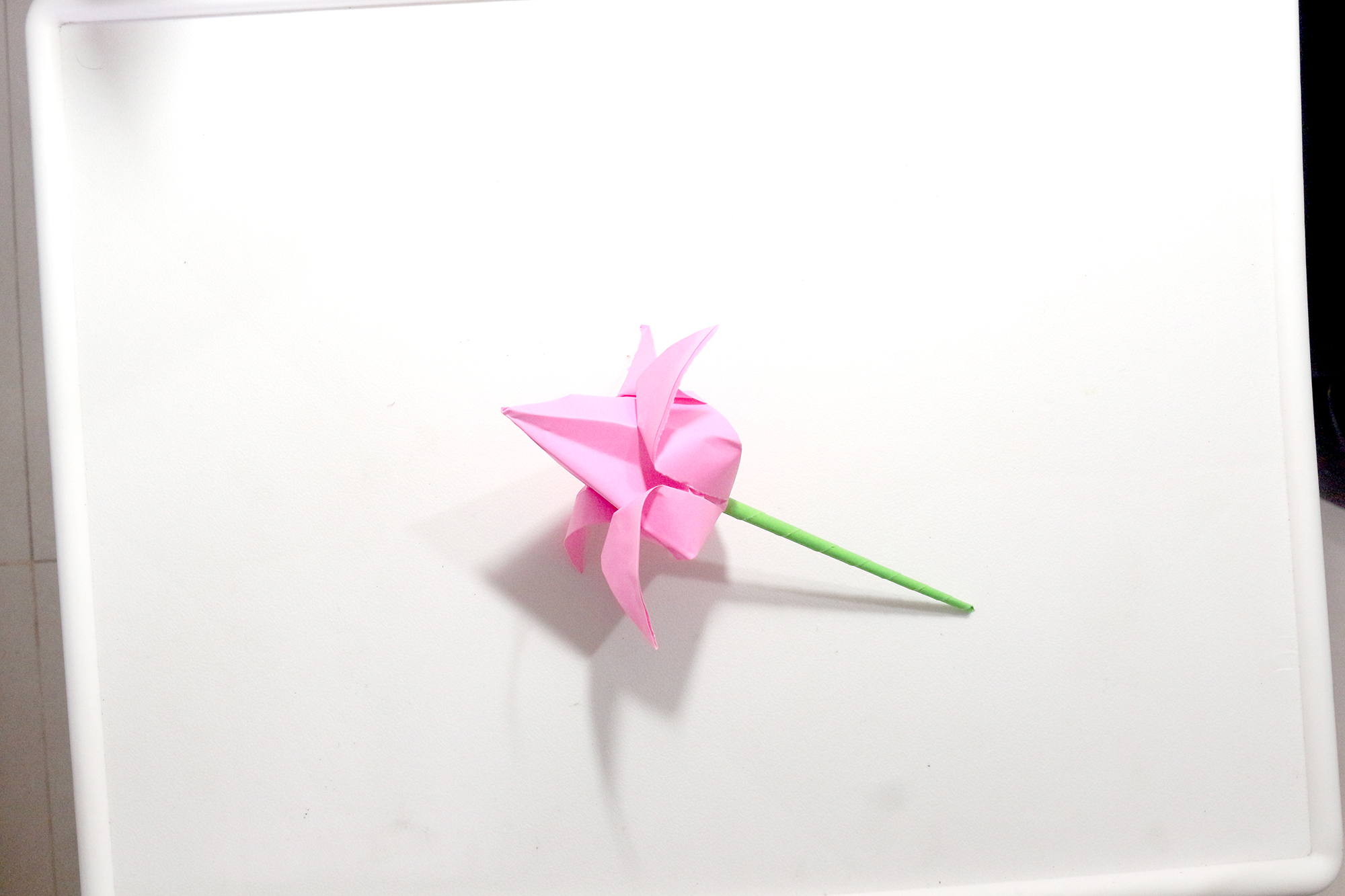 Picture of Now You Have a Origami Lotus