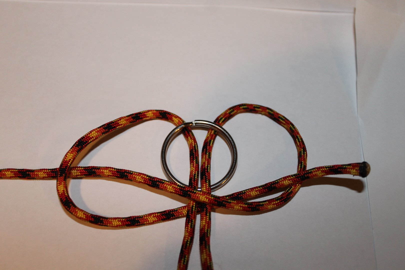 Picture of Tying the Knot