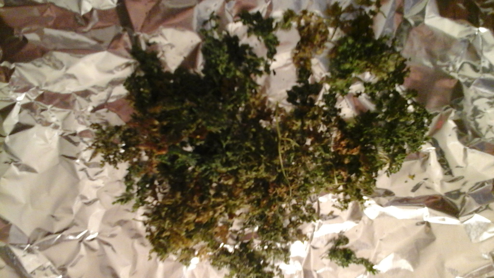 Picture of Day 1- Preparing the Chervil Infused Rum