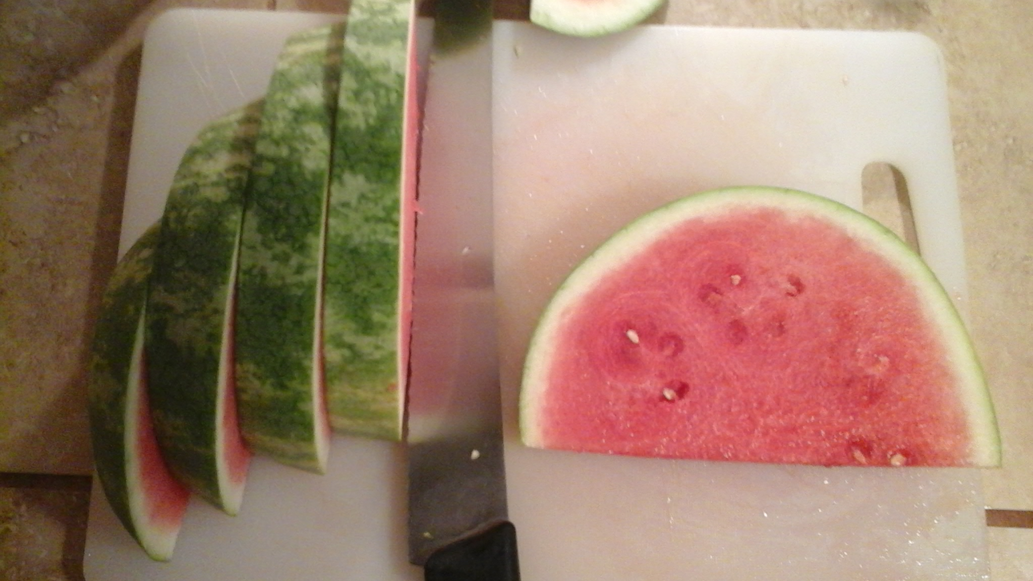 Picture of Day 2- Preparing the Watermelon