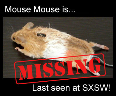 Picture of Mouse Mouse is Missing!
