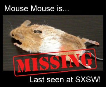 Mouse Mouse is Missing!