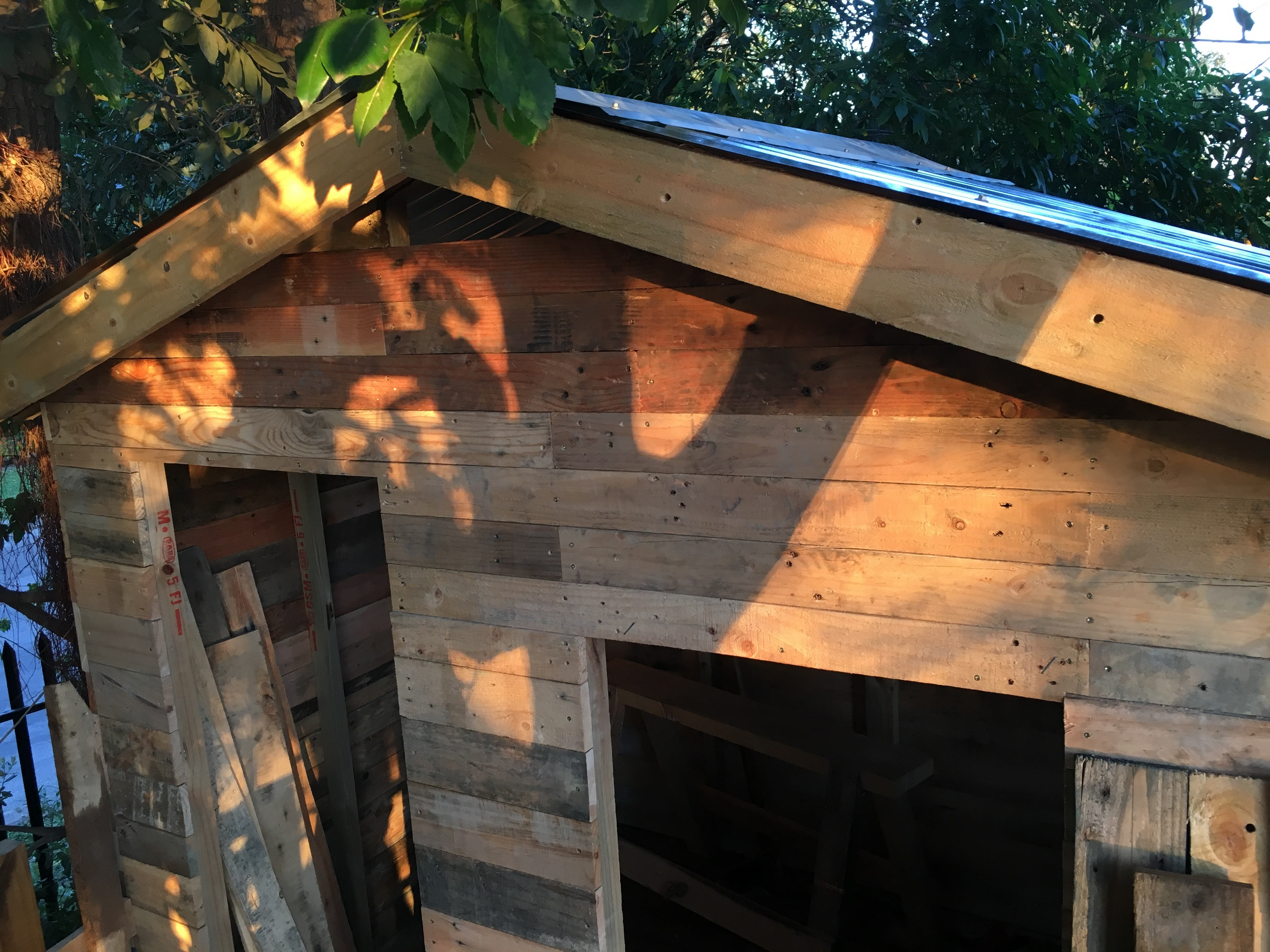 Picture of The Roof