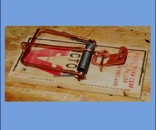 Mouse Trap Speed!