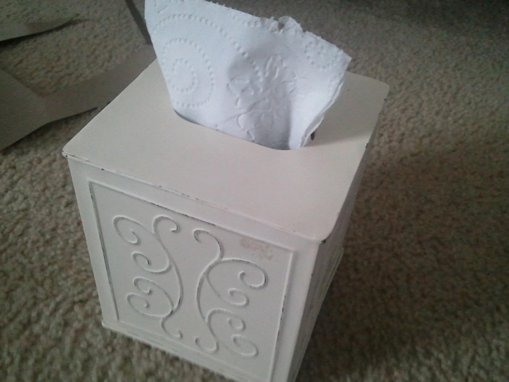 Picture of Tissue Holder Secret Compartment
