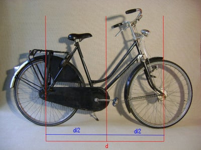 Cut the Bike in Half