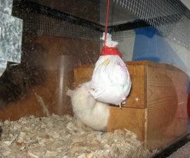 """A better """"Rat Pinata"""""""