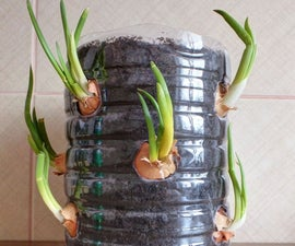 Green Onion Tower